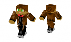 A Time Lord Skin