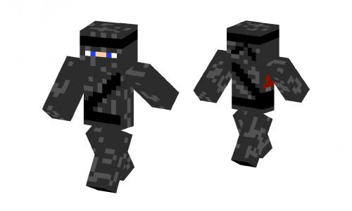 Ninja Atori Skin