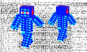 The Ice Ninja Skin