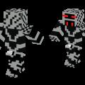 wolf-spider-skin-7914864.png